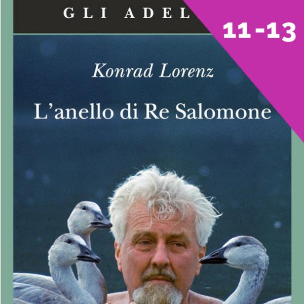 l'anello di re salomone, Lorenz, zolleggiamo